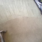 Carpet-Cleaning-Katy