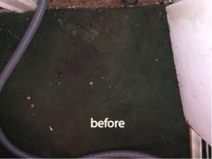 Katy -1-before-carpet