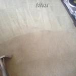 Katy -Carpet-Cleaning-Company
