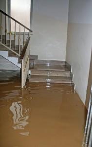 Katy flood-in-house